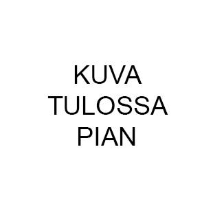 Kalevala Koru Kuutar 303/1 rintakoru hopea